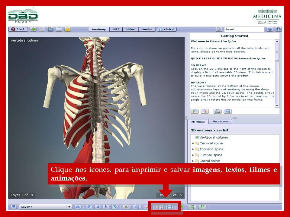 Clique nos ícones, para imprimir e salvar imagens, textos, filmes e animações.