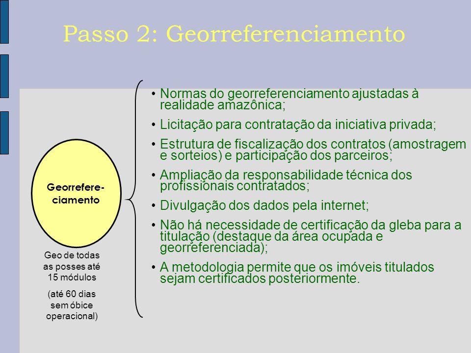 Passo 2: Georreferenciamento