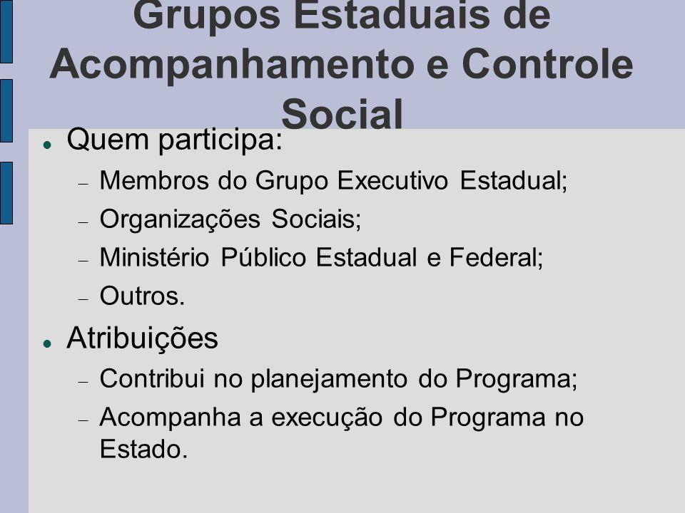 Grupos Estaduais de Acompanhamento e Controle Social