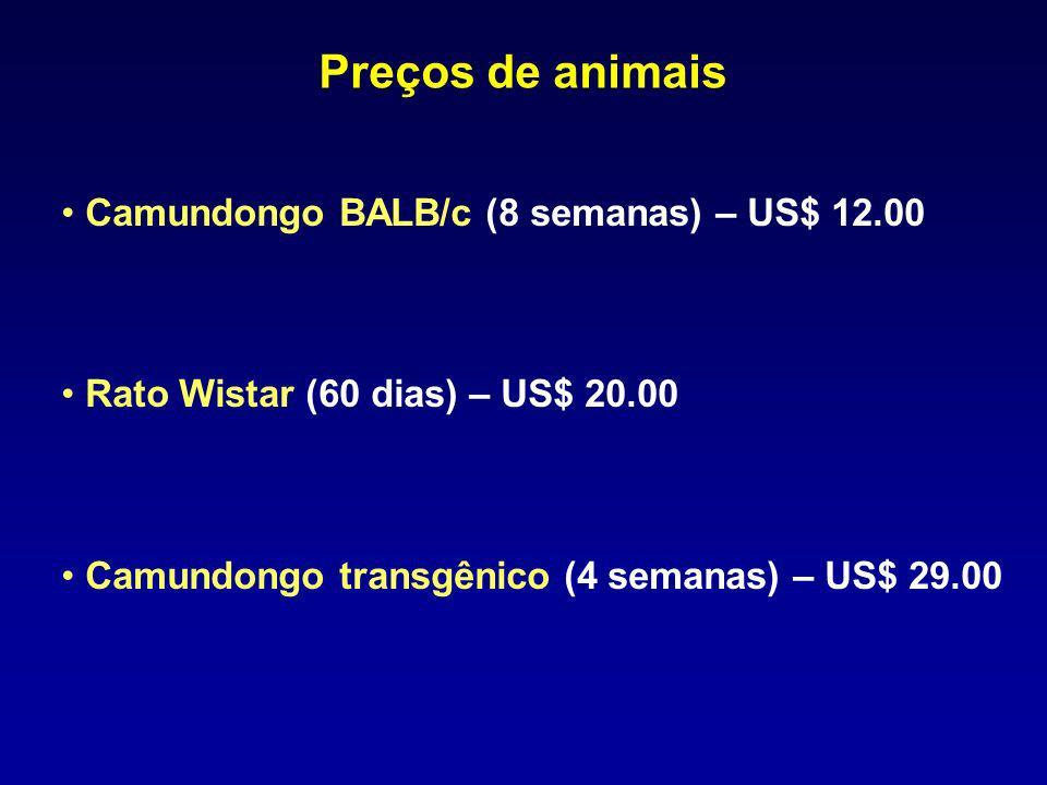 Preços de animais Camundongo BALB/c (8 semanas) – US$ 12.00
