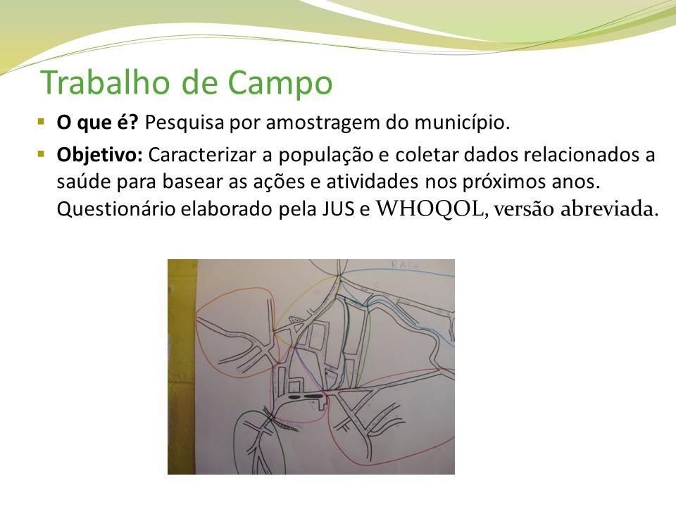 Trabalho de Campo O que é Pesquisa por amostragem do município.