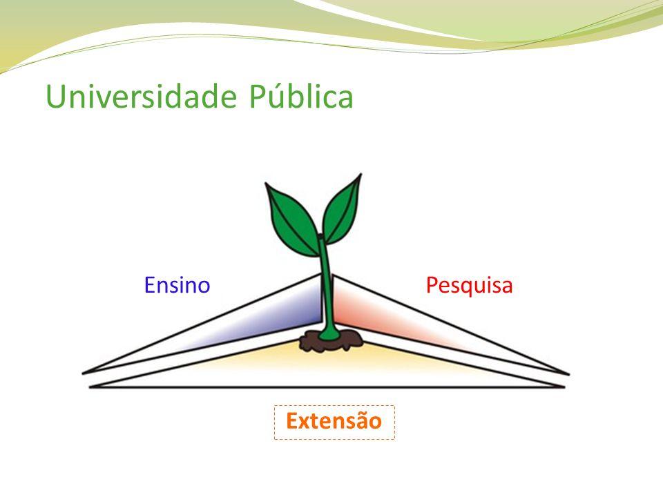 Universidade Pública Ensino Pesquisa Extensão
