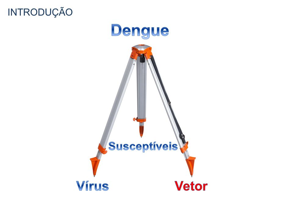 INTRODUÇÃO Dengue Susceptíveis Vírus Vetor