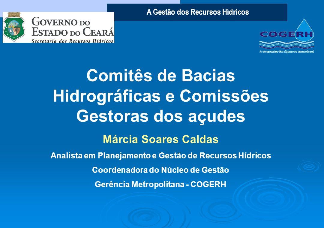 Comitês de Bacias Hidrográficas e Comissões Gestoras dos açudes
