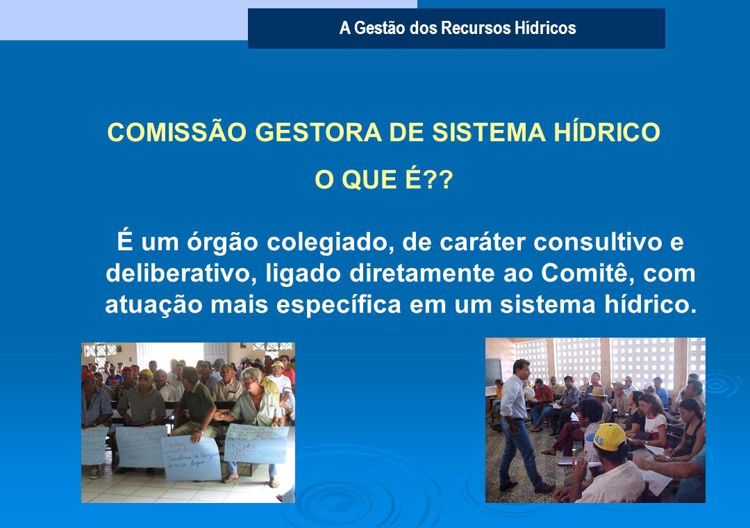 COMISSÃO GESTORA DE SISTEMA HÍDRICO