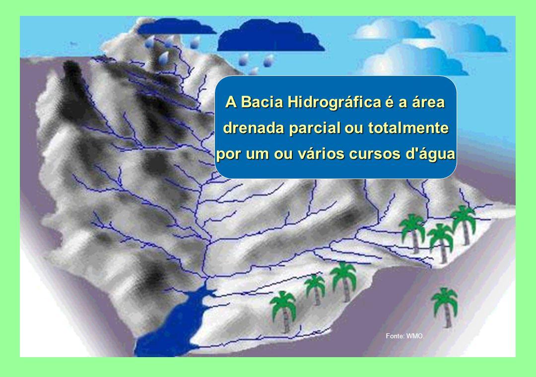 A Bacia Hidrográfica é a área drenada parcial ou totalmente