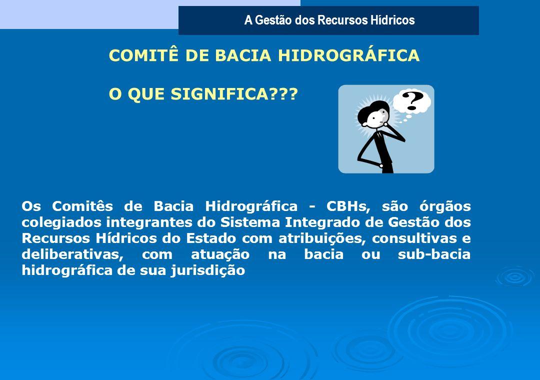 COMITÊ DE BACIA HIDROGRÁFICA O QUE SIGNIFICA