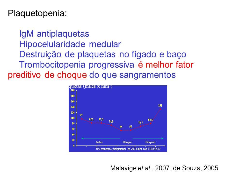 Hipocelularidade medular Destruição de plaquetas no fígado e baço