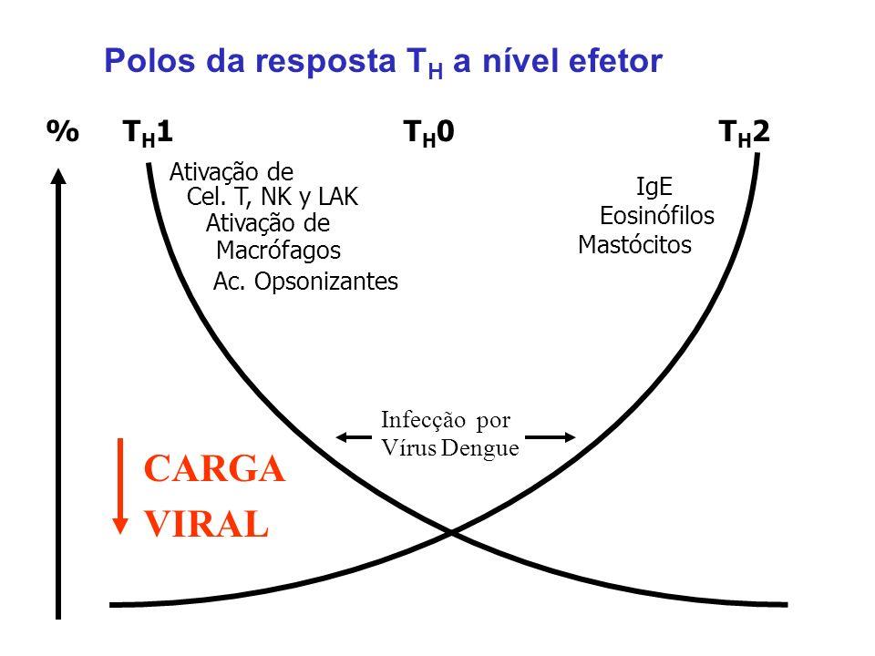 CARGA VIRAL Polos da resposta TH a nível efetor % TH1 TH0 TH2