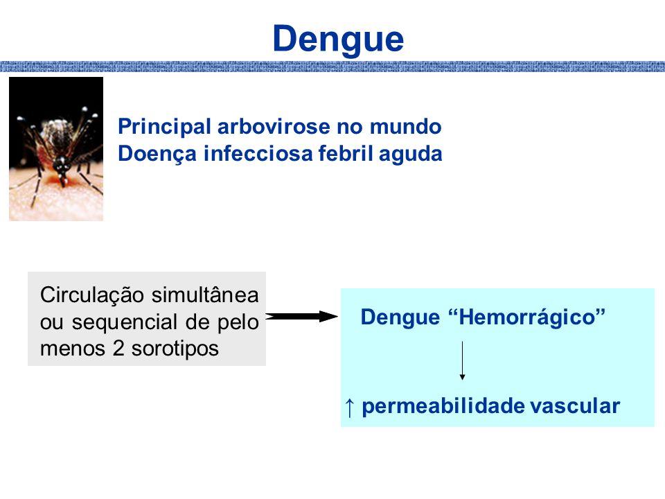 Dengue Principal arbovirose no mundo Doença infecciosa febril aguda