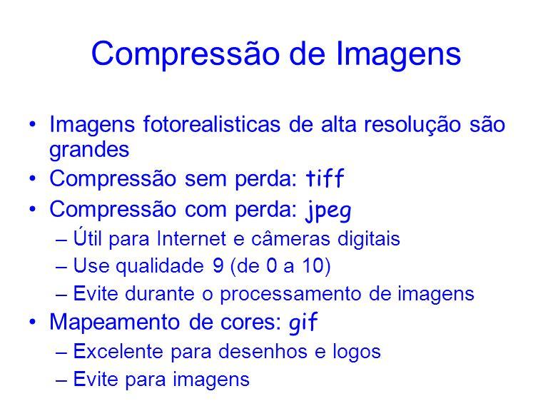 Compressão de ImagensImagens fotorealisticas de alta resolução são grandes. Compressão sem perda: tiff.