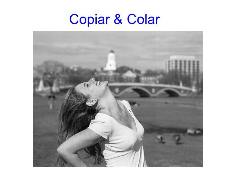 Copiar & Colar