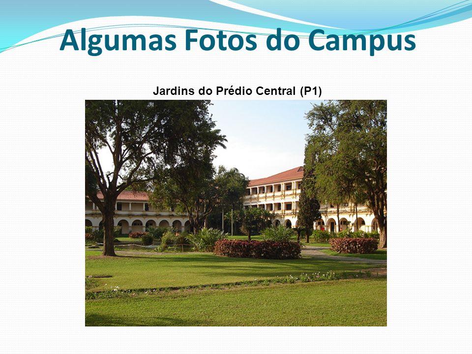 Algumas Fotos do Campus