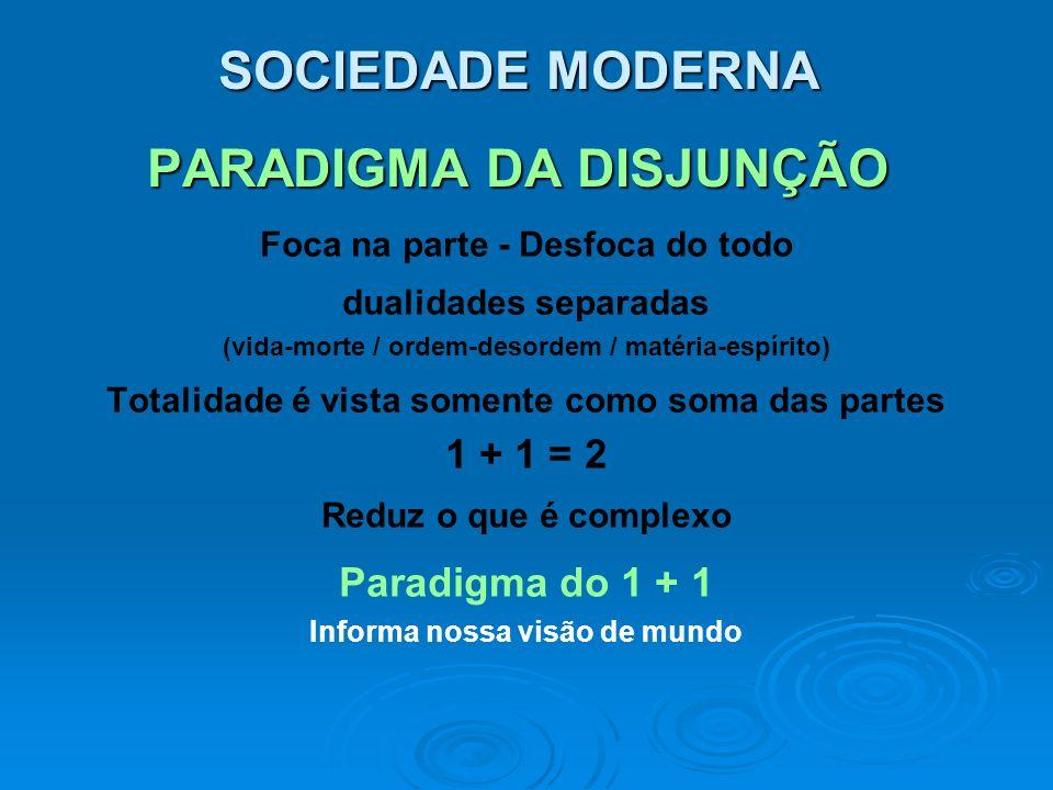 SOCIEDADE MODERNA PARADIGMA DA DISJUNÇÃO