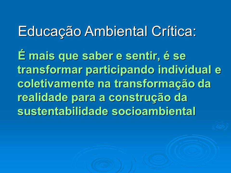 Educação Ambiental Crítica: