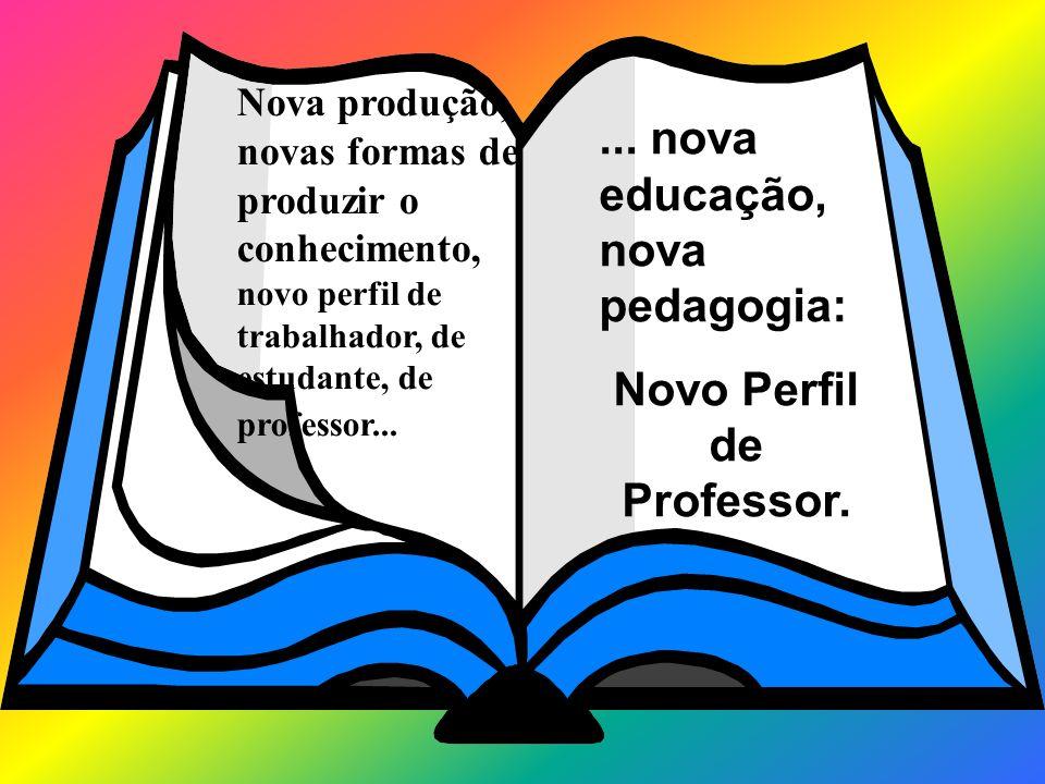 Novo Perfil de Professor.