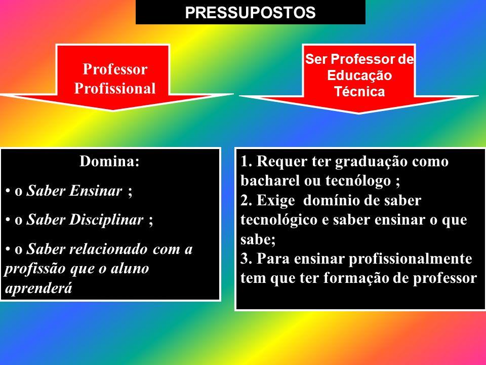 Ser Professor de Educação Técnica Professor Profissional
