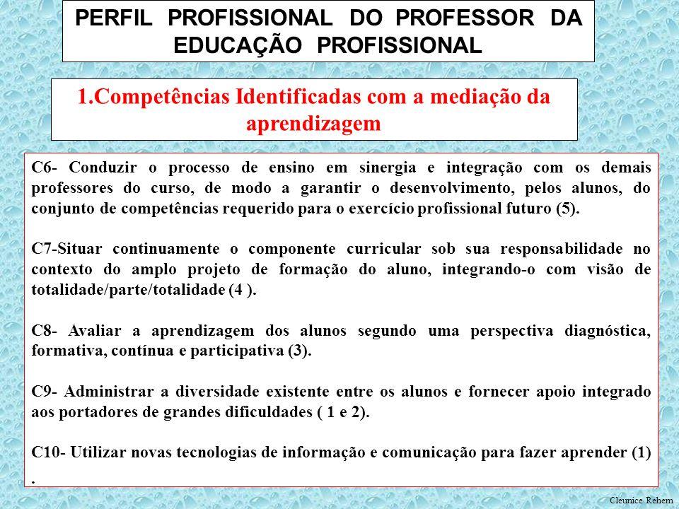 PERFIL PROFISSIONAL DO PROFESSOR DA EDUCAÇÃO PROFISSIONAL
