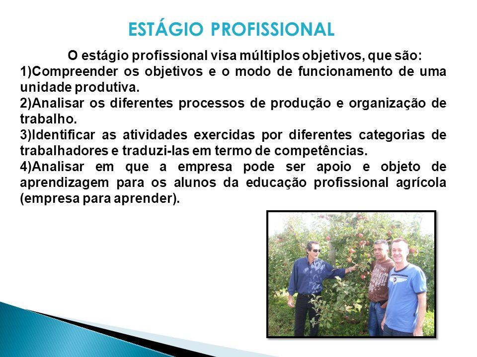 ESTÁGIO PROFISSIONAL O estágio profissional visa múltiplos objetivos, que são: