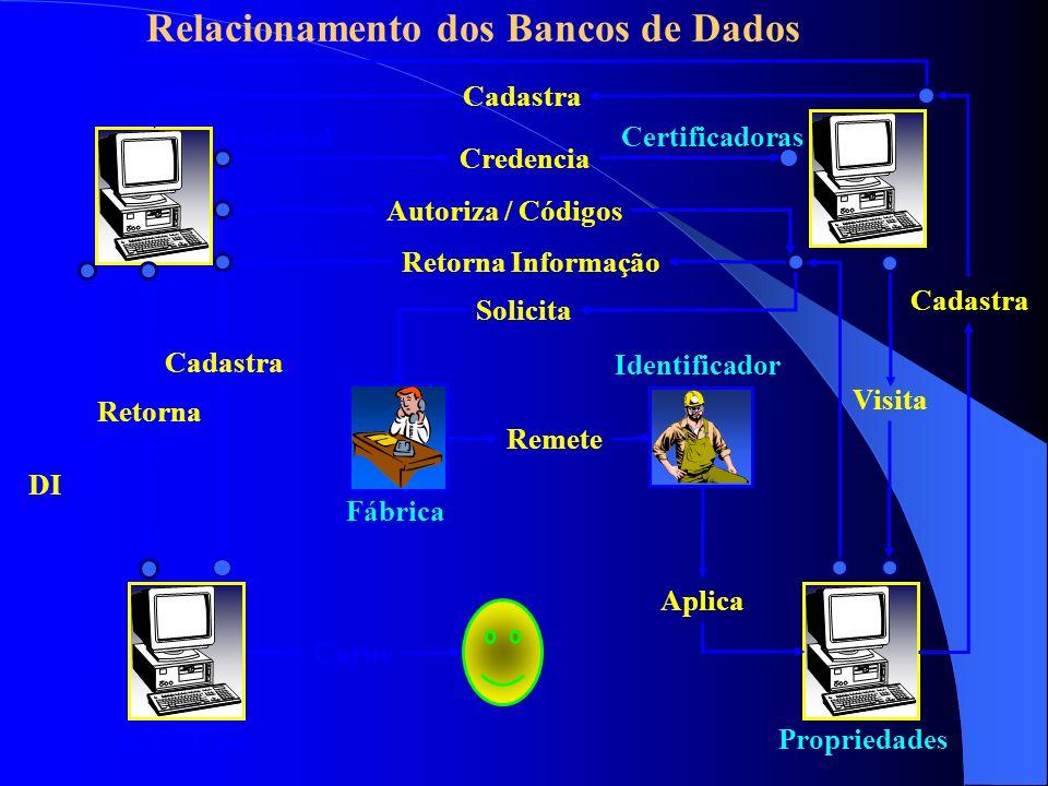 Relacionamento dos Bancos de Dados