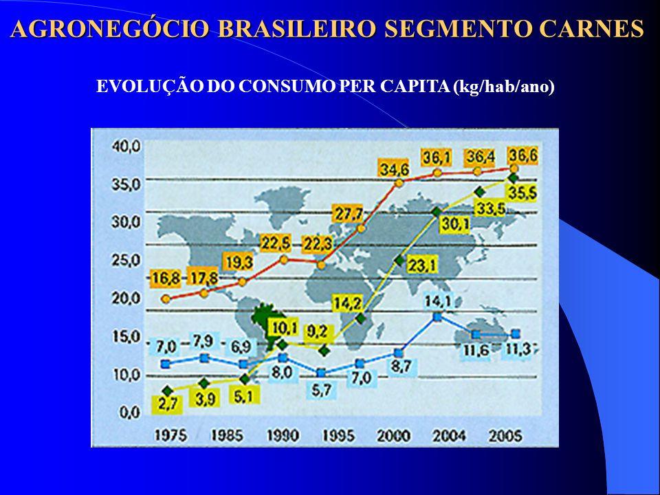 AGRONEGÓCIO BRASILEIRO SEGMENTO CARNES