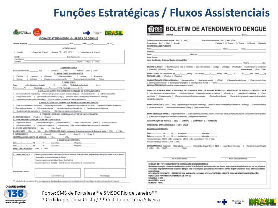 Funções Estratégicas / Fluxos Assistenciais