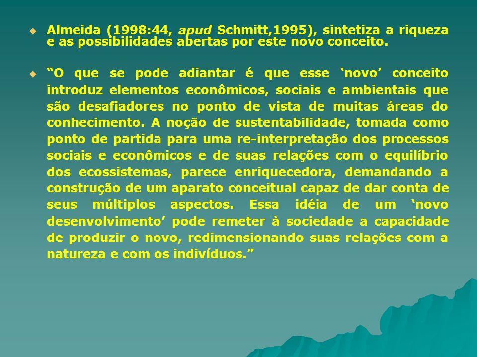 Almeida (1998:44, apud Schmitt,1995), sintetiza a riqueza e as possibilidades abertas por este novo conceito.