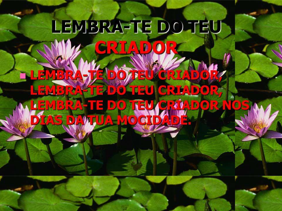 LEMBRA-TE DO TEU CRIADOR
