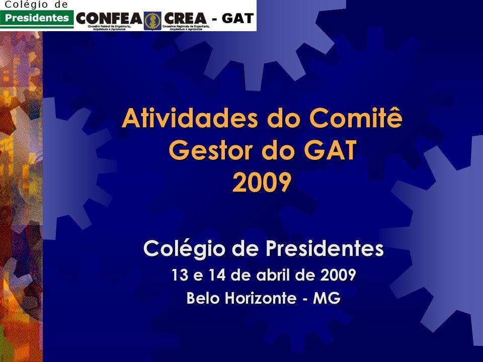Atividades do Comitê Gestor do GAT 2009