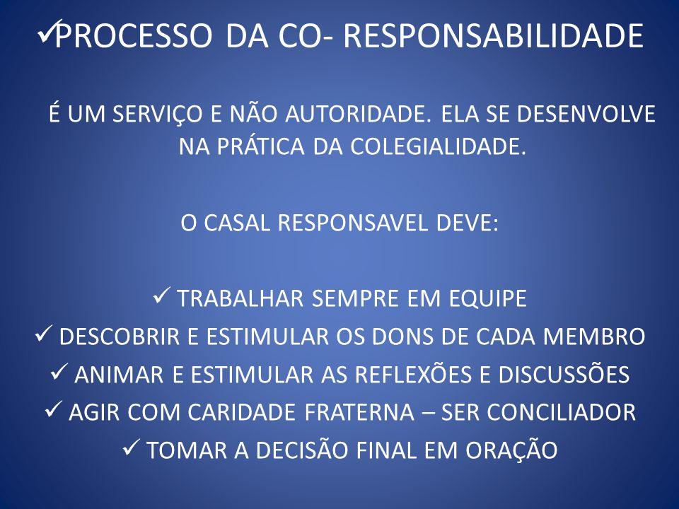 PROCESSO DA CO- RESPONSABILIDADE