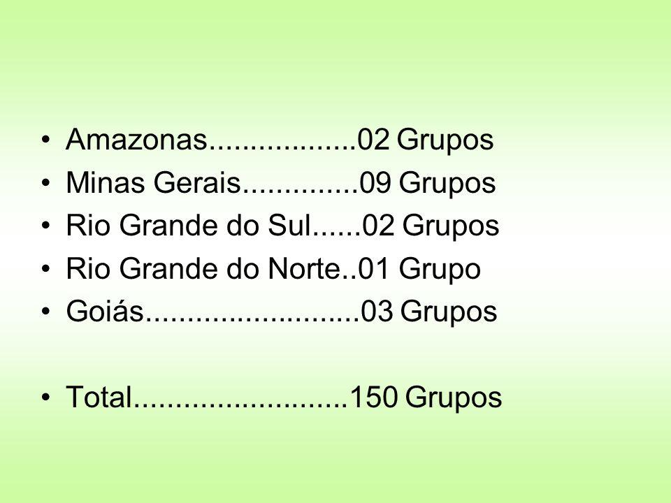 Amazonas..................02 Grupos Minas Gerais..............09 Grupos. Rio Grande do Sul......02 Grupos.
