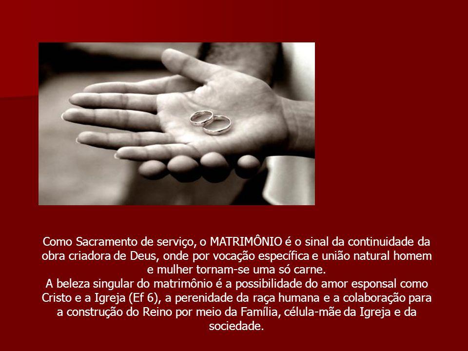 Como Sacramento de serviço, o MATRIMÔNIO é o sinal da continuidade da obra criadora de Deus, onde por vocação específica e união natural homem e mulher tornam-se uma só carne.