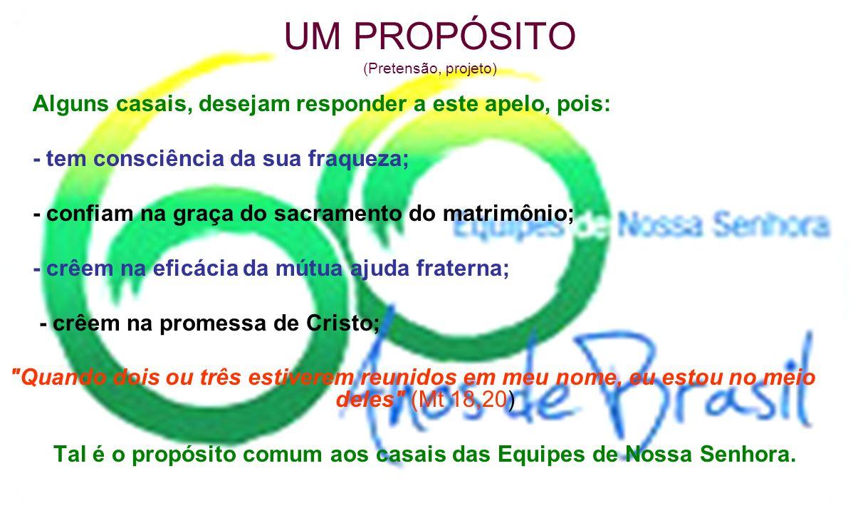 UM PROPÓSITO (Pretensão, projeto)