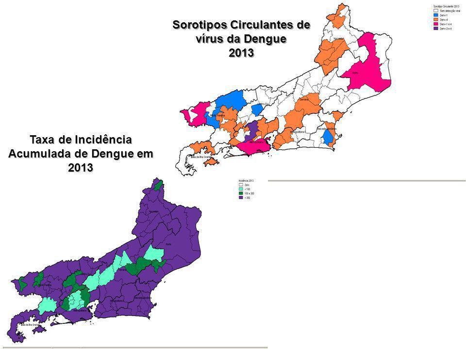 Sorotipos Circulantes de vírus da Dengue 2013