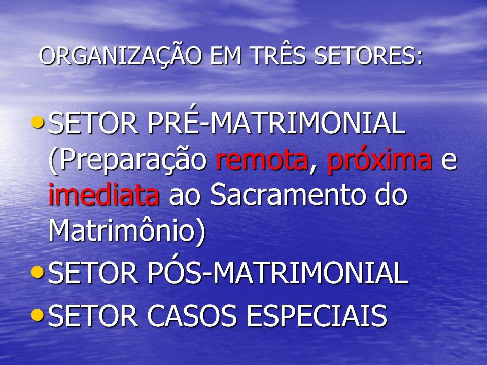ORGANIZAÇÃO EM TRÊS SETORES: