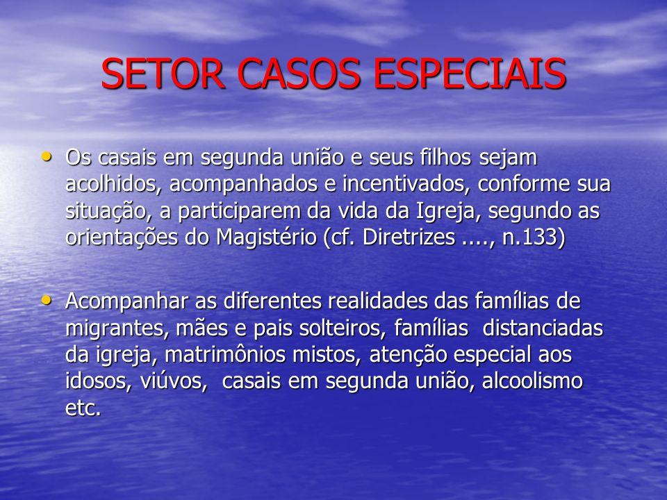 SETOR CASOS ESPECIAIS