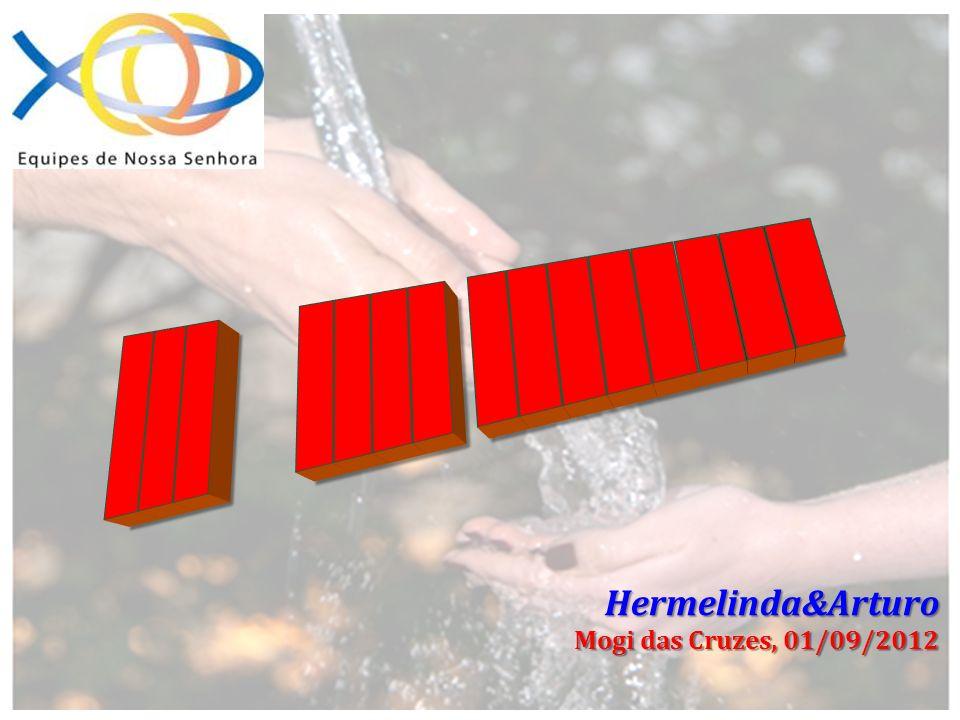 ___ ____ ________ Hermelinda&Arturo Mogi das Cruzes, 01/09/2012