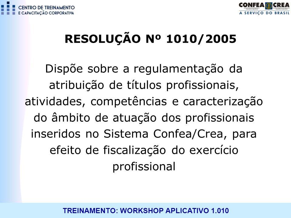 RESOLUÇÃO Nº 1010/2005