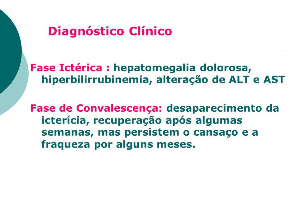 Diagnóstico Clínico Fase Ictérica : hepatomegalia dolorosa, hiperbilirrubinemia, alteração de ALT e AST.