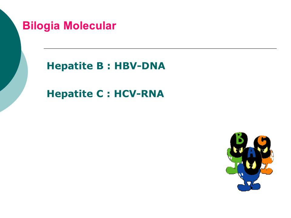Bilogia Molecular Hepatite B : HBV-DNA Hepatite C : HCV-RNA