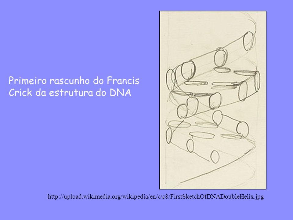 Primeiro rascunho do Francis Crick da estrutura do DNA