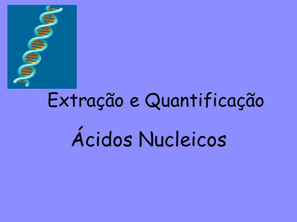 Extração e Quantificação