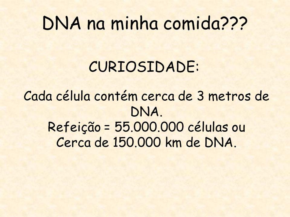 Cada célula contém cerca de 3 metros de DNA.