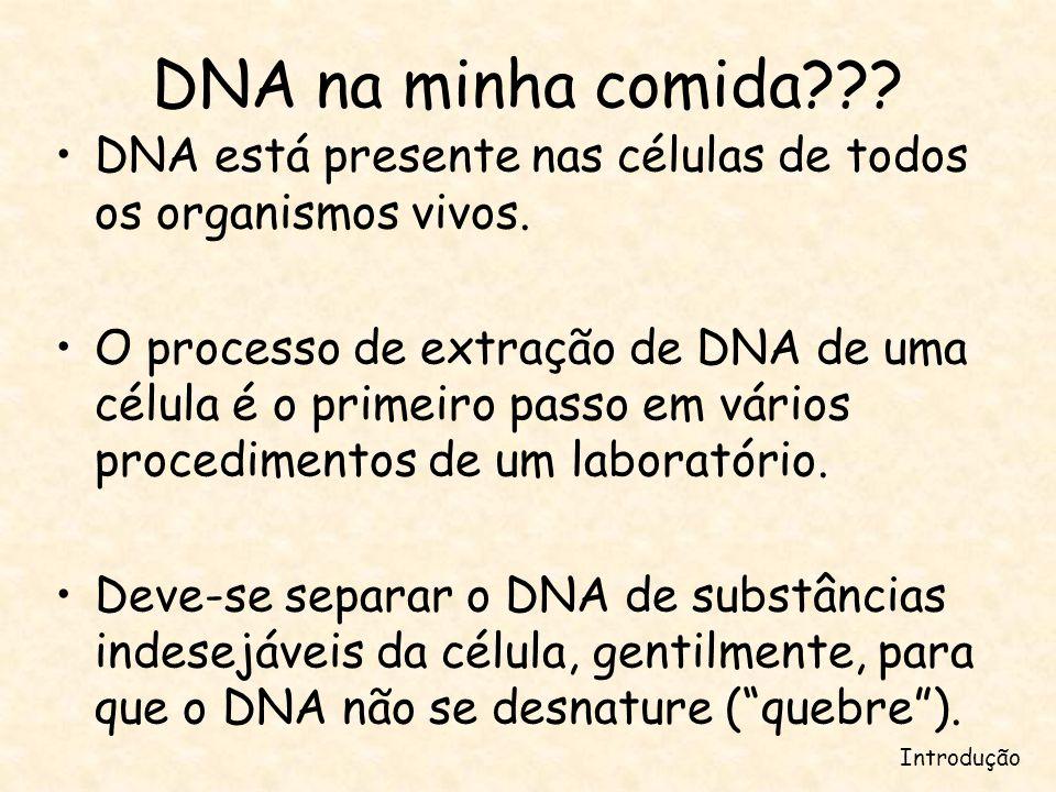 DNA na minha comida DNA está presente nas células de todos os organismos vivos.