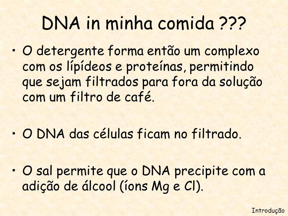 DNA in minha comida