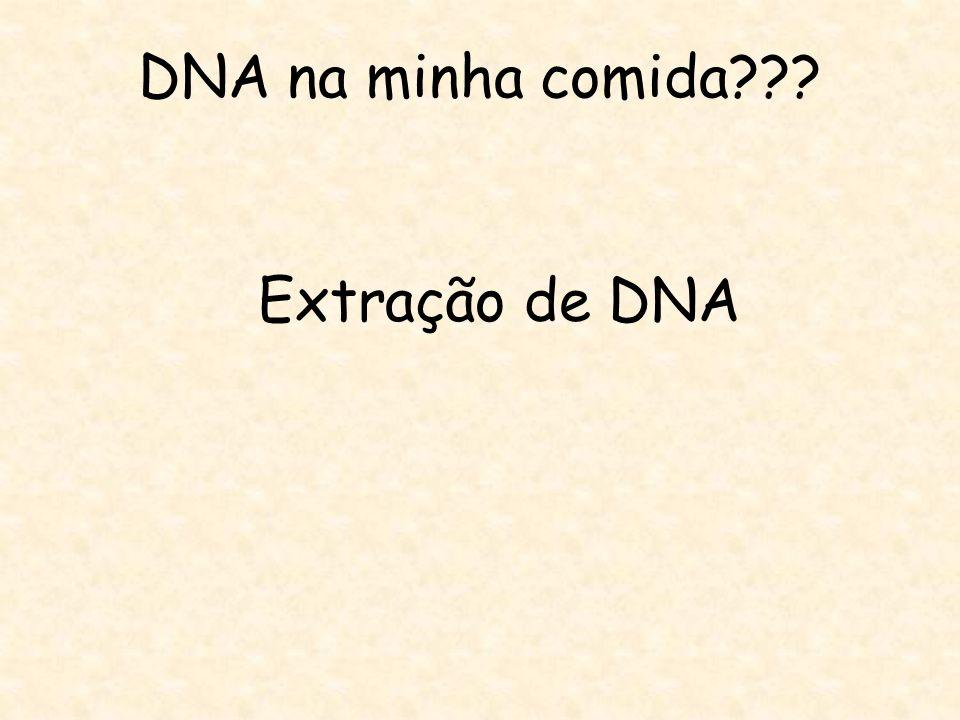 DNA na minha comida Extração de DNA