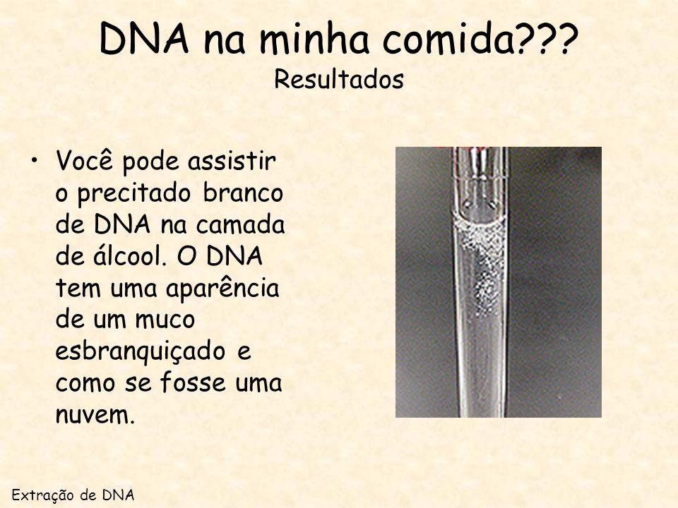 DNA na minha comida Resultados