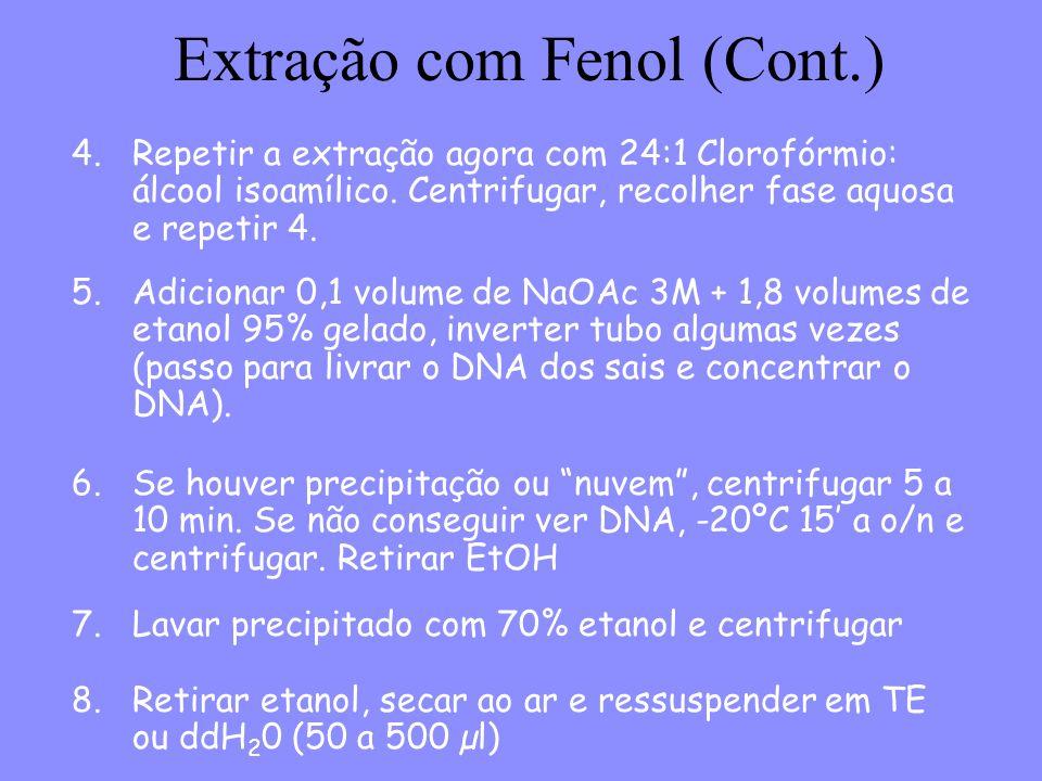 Extração com Fenol (Cont.)
