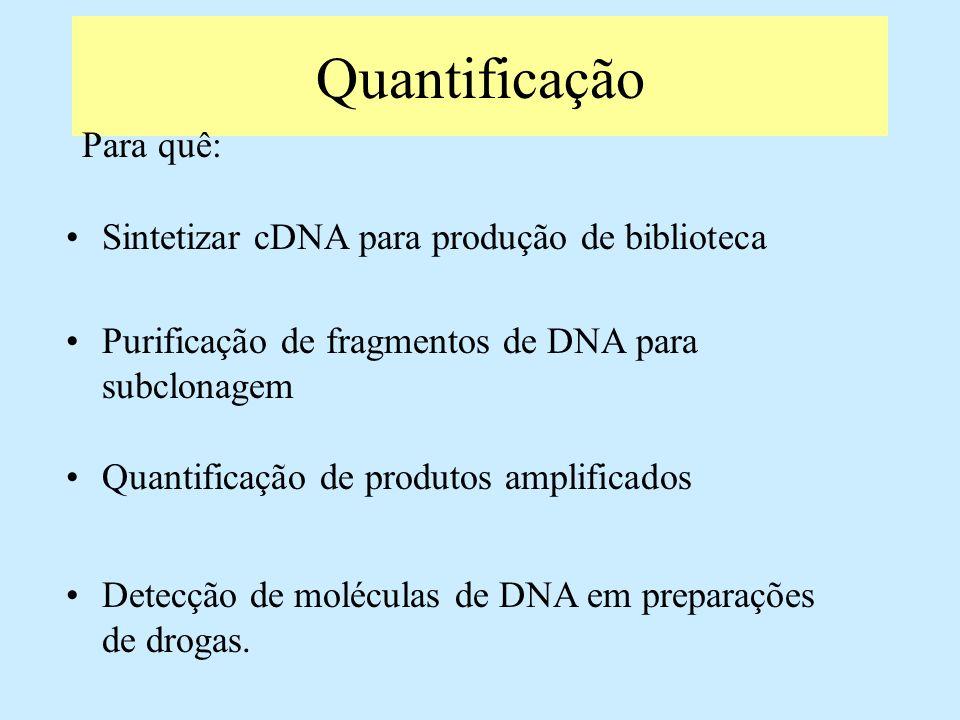 Quantificação Para quê: Sintetizar cDNA para produção de biblioteca