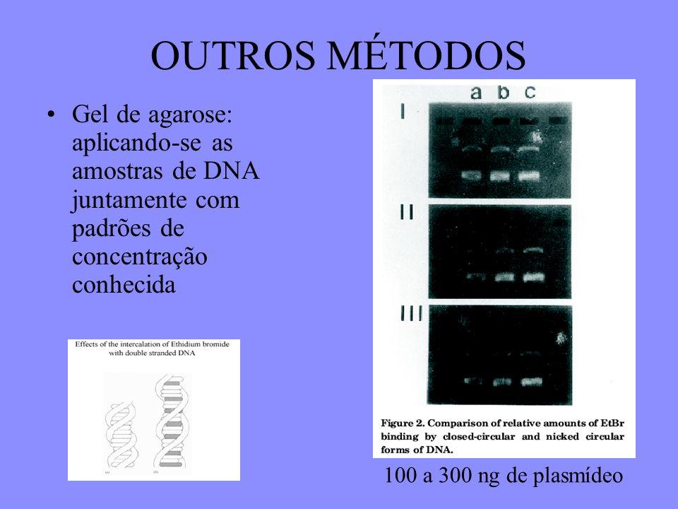 OUTROS MÉTODOS Gel de agarose: aplicando-se as amostras de DNA juntamente com padrões de concentração conhecida.
